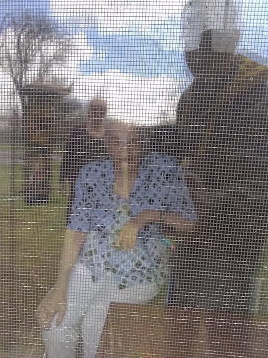 Mom through the Window